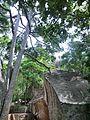 Sigiriya, Sri Lanka - panoramio (2).jpg