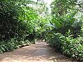 Singapore Zoo 20.JPG