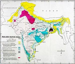Patrick Hehir - Sir Patrick Hehir's  Malaria Map of India
