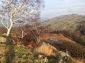 Skelwith, UK - panoramio (11).jpg