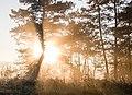 Sonne auf der Schwäbischen Alb.jpg