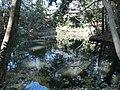Sorosenen Pond.JPG