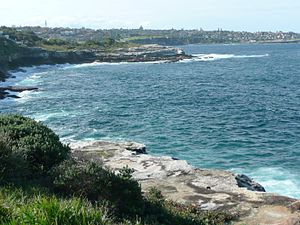 South Coogee, New South Wales - Image: South Coogee 14