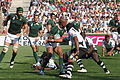 South Africa vs Fiji 2007 RWC (1).jpg