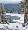 Spring, Yosemite High Country 5-15 (20717828908).jpg