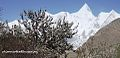 Spring in Gojal Valley.jpg