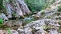 Srećkovo vrelo - panoramio (1).jpg