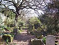 St Andrews Church Graveyard - geograph.org.uk - 147088.jpg