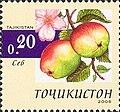 Stamps of Tajikistan, 007-05.jpg
