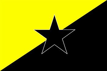 English: Anarcho-capitalism flag with black star