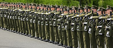 Soldiers of the Irish Army forming a guard of honour for a visiting dignitary State Visit by The President of the Republic of Mozambique011 (14173266347).jpg