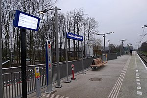 Station Boskoop Snijdelwijk.jpg
