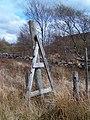 Stile on deer fence - geograph.org.uk - 165689.jpg