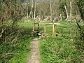 Stile where footpath meets bridleway - geograph.org.uk - 1228318.jpg