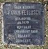 Stolperstein Otto-Nagel-Str 38 (Biesd) Fanny Feibusch.jpg