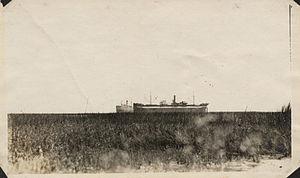 Stranded freight vessels.jpg