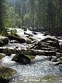 Stream of Kucherla River.jpg
