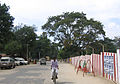 Stree taround Palani Temple 5.jpg