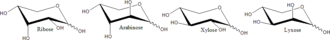 Monosaccharide - Pyranose forms of some pentose sugars.