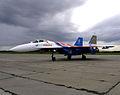 Sukhoi Su-27 (4258489135).jpg
