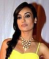 Surbhi Jyoti at Television Style Awards.jpg