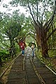 Taiwan 2009 JinGuaShi Historic Gold Mine Abadoned Railway Tracks FRD 8753.jpg