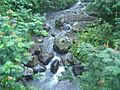 Tawangmangu 2009 Bennylin 055.jpg