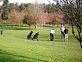 Teeing off at the first, Druids Glen - geograph.org.uk - 1587219.jpg