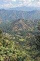 Terrace Farming in Nepal in Rakathum VDC-0366.jpg