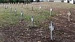 The Emigrant headstones (30425961074).jpg