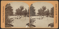 The Esplanade, from Robert N. Dennis collection of stereoscopic views.png