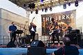 The Jerks, Bergfunk OpenAir 2015 09.jpg