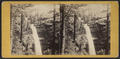 The Kauterskill Fall, by E. & H.T. Anthony (Firm) 3.png