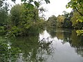 The Lake, Mongewell - geograph.org.uk - 592099.jpg
