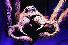 The Making of Harry Potter 29-05-2012 (Aragog's torso).jpg