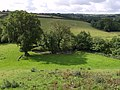 The West Lew - geograph.org.uk - 488497.jpg