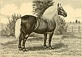 The breeds of live stock, and the principles of heredity (1887) (14594539048).jpg
