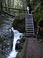 The famous stairs on the Steep Ravine trail - panoramio.jpg