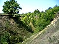 The hare's ravine - panoramio - Oleg Seliverstov (3).jpg