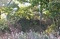 The motte of Fat Hugh's Aberlleiniog Castle - geograph.org.uk - 1542361.jpg