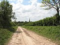 This way to Snettisham - geograph.org.uk - 1300523.jpg