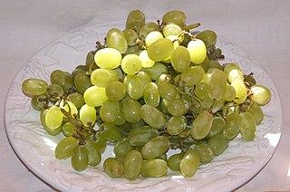 Sultana (grape) Variety of grape