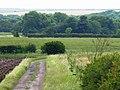Thorpe Bulmer Dene - geograph.org.uk - 482822.jpg