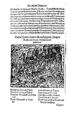 Thurnierbuch (Rüxner) 096.png
