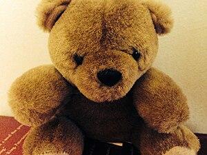 A teddy bear named Tommy.