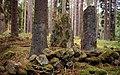 Torpa solstenar (RAÄ-nr Sörby 31-1) 167-06.jpg