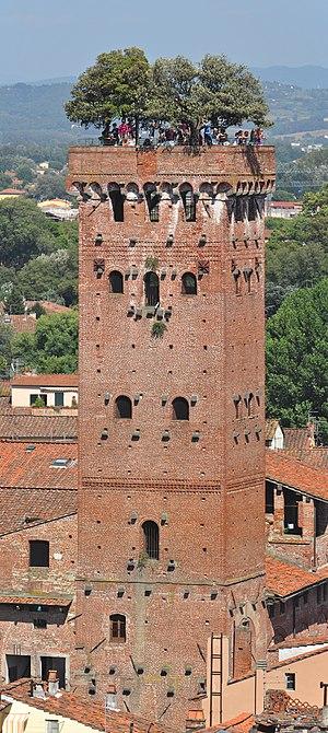 Guinigi Tower - Guinigi Tower (view from the Torre delle Ore)