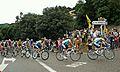 Tour de francia-arenys de munt-2009.JPG