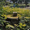 Tuin, drinkbak voor vogels - Maastricht - 20353915 - RCE.jpg
