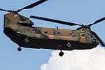 USAF Yokota AB (7805891200).jpg
